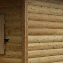 cedar siding shed option or