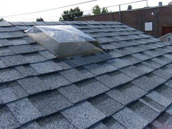 skylight shed option