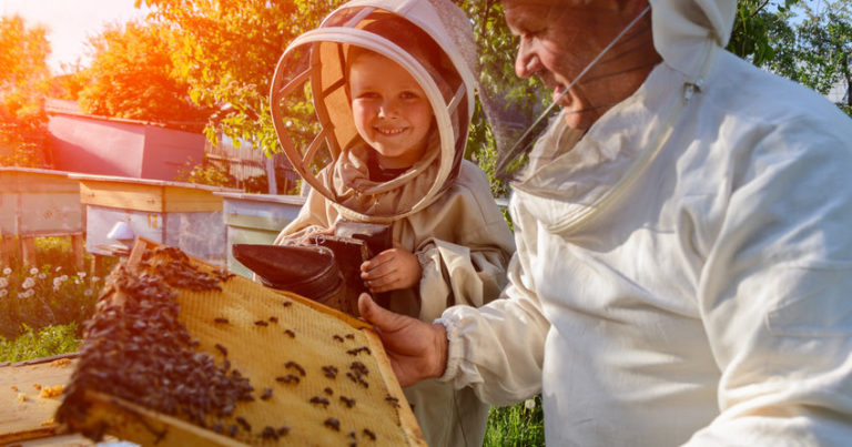 beekeeping will help grow your own food