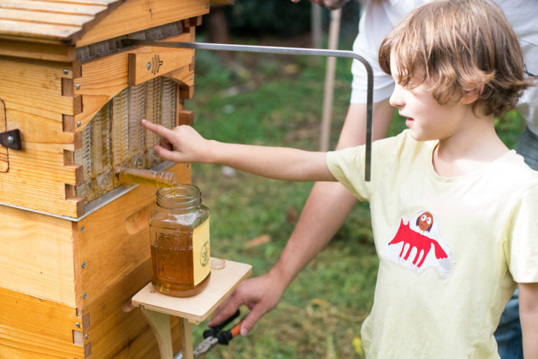 grow your own food with a flow hive